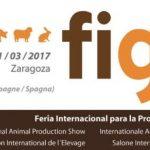 Llega Figan 2017 a Zaragoza